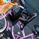 Je baby veilig meenemen op de fiets